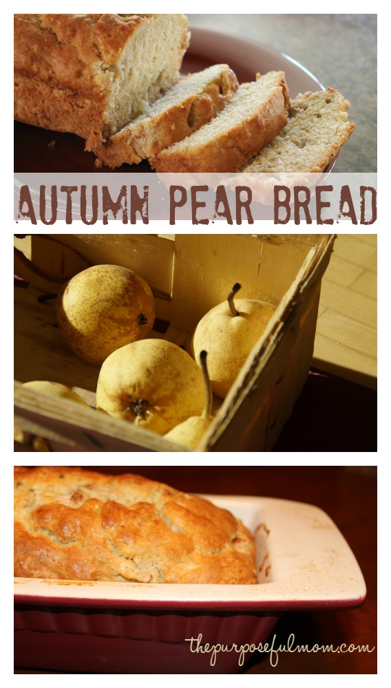 autumn pear bread--a delicious fall baked treat