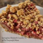 Springtime Rhubarb Crumble Pie