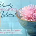 The Slowly Becoming Natural Series is Back! {And Why It Went Away for Awhile}