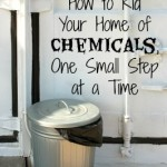 Coming Clean: How to Rid Your Home of Chemicals, One Guilt Free Step at a Time