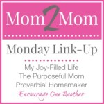 Our Last Mom 2 Mom Monday Link Up!
