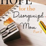 Hope for the Disorganized Mom Part 2