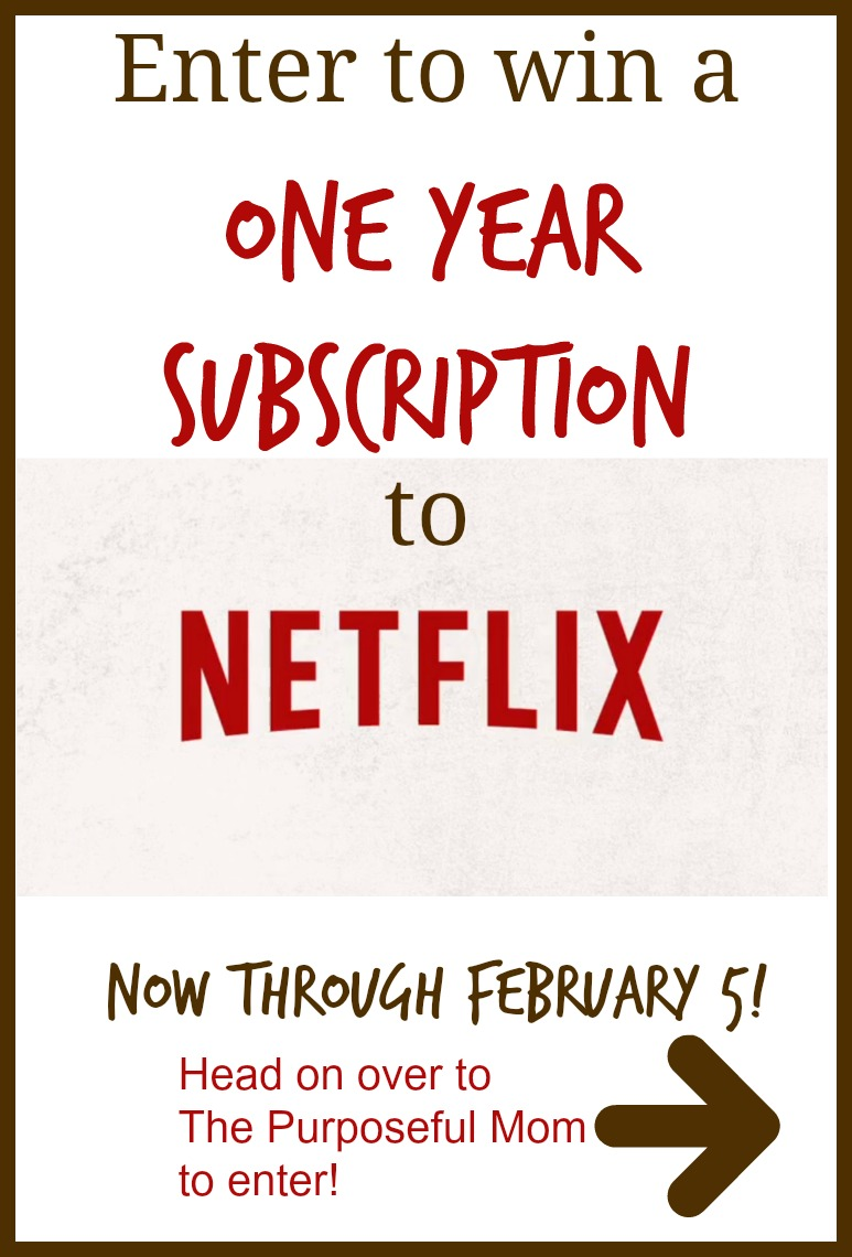 Enter to win a year's subscription to Netflix Instant Streaming!