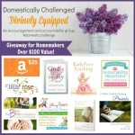 Win a Giveaway Package That Will Help You With Your Homemaking!