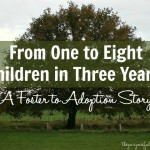 From One to Eight Children in Three Years! A Foster Care to Adoption Story
