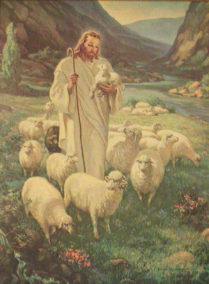 jesus-compassion-sheep