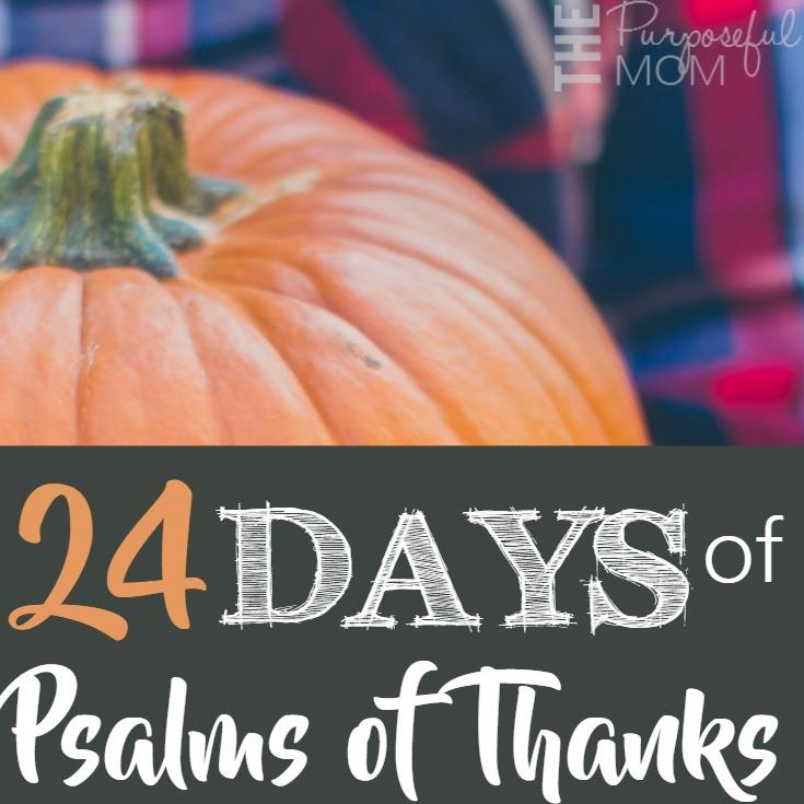24-days-square