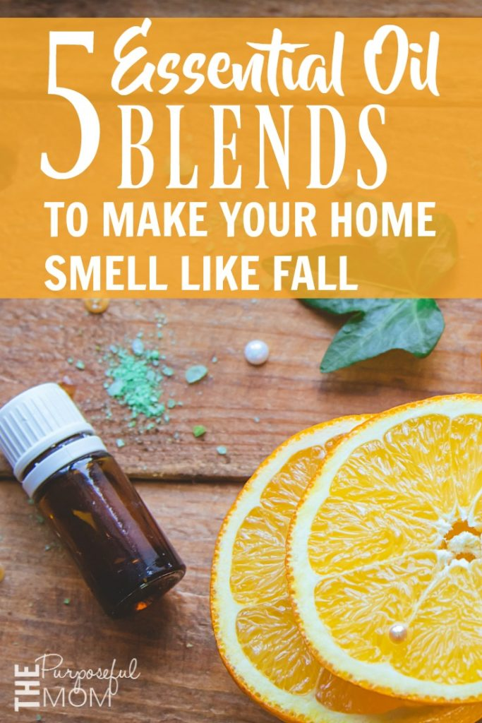 Love autumn and essential oils? Combine them and make your home feel even more cozy this season! Here are 5 essential oil blends to make your home smell like fall?