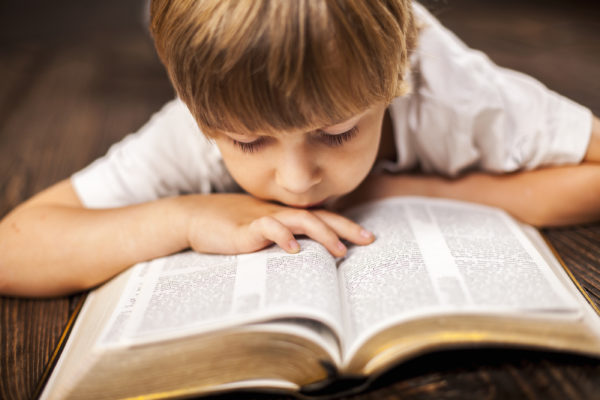 book of proverbs bible reading plan for kids