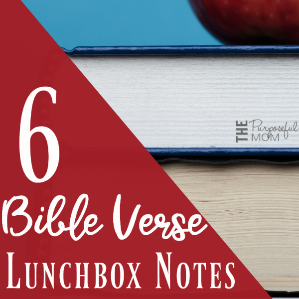 Bible Verse Lunchbox Notes square