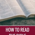 The Best Way to Start Reading the Bible as a New Believer