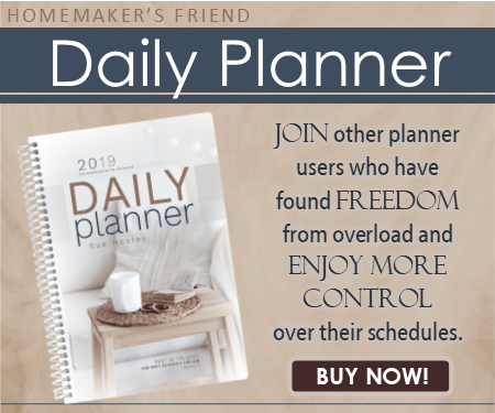 Homemaker's Friend Daily Planner 2019 review
